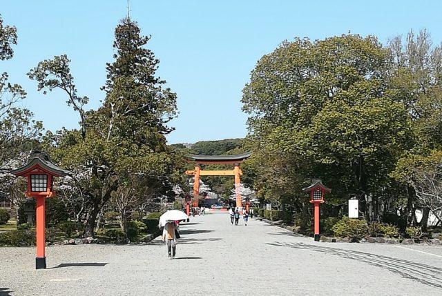 神社 参道